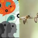 illustration intelligence collective